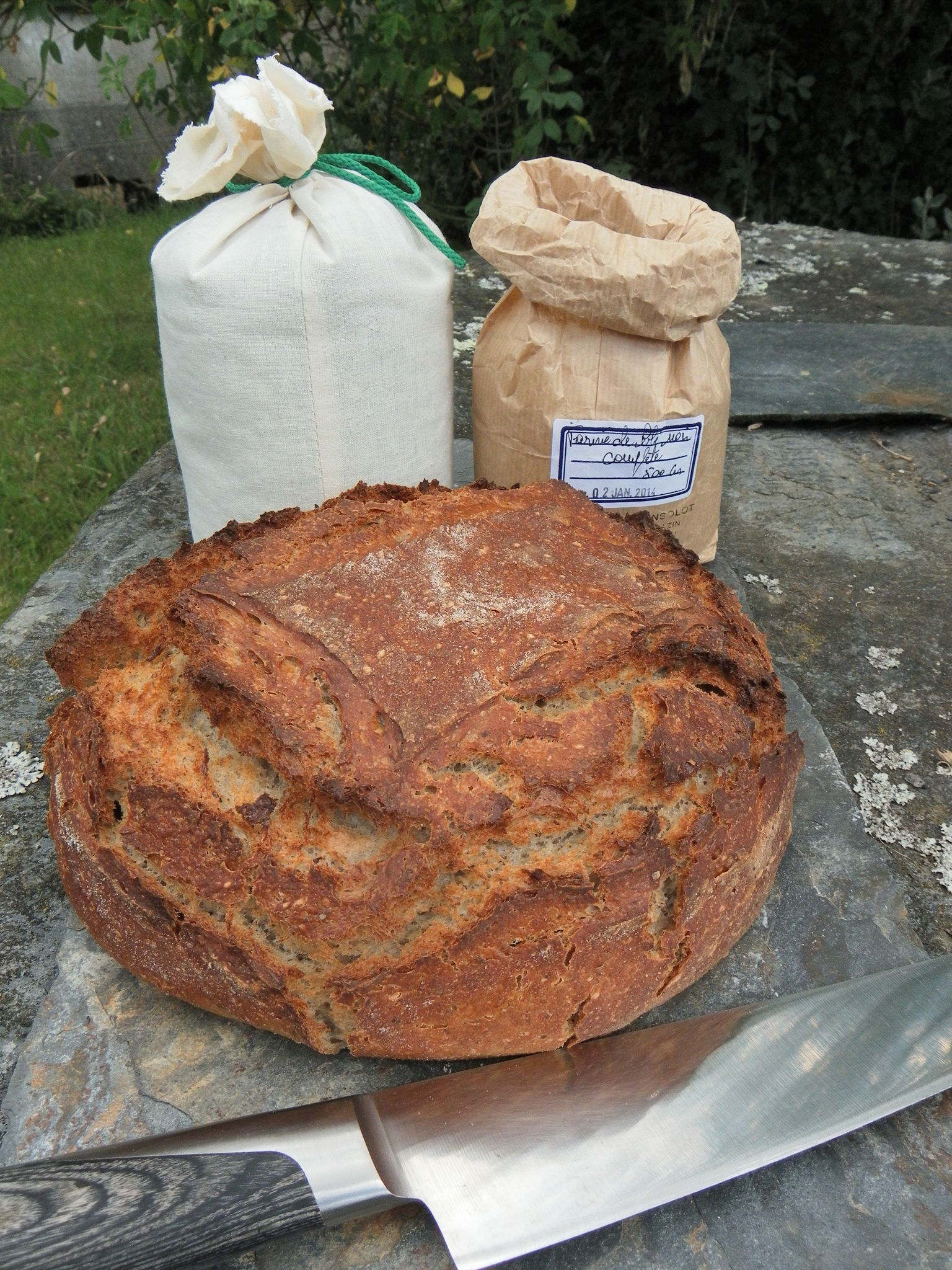 """Du pain au blé noir pour un """"arbre qui marche"""""""
