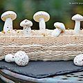 Bûche praline et ses petits champignons meringués