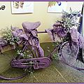 Semaine 25 2 roues