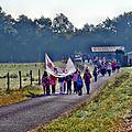 Marche ROSE 11 octobre 2015 (19)