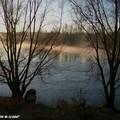 Loire embrumée sous le soleil levant à Vouvray (37)