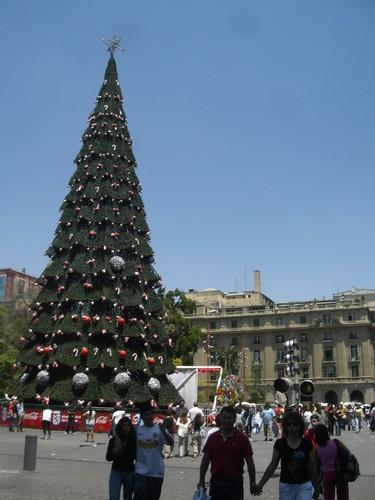 Santiago, Plaza de Armas, Noel avec un grand soleil