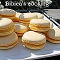 Macarons au citron {au i-cook'in}
