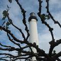 Biarritz, le phare (64)