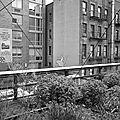 High Line (20)