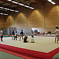 2018 stage capoeira breizilienne niveau1
