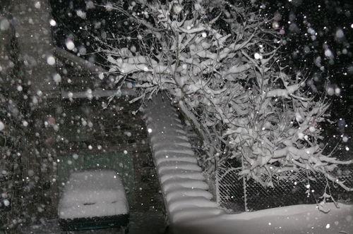 2008 12 11 La neige qui tombe de façon forte