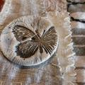 Solos de papillons