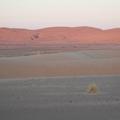 Coucher de soleil dans le sud Marocain