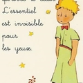Windows-Live-Writer/47e91003d5cf_D116/Petit Prince_thumb