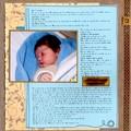 journal d'une naissance