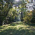 [<b>Haute</b>-<b>Savoie</b>] promenade dans la forêt de Ripaille