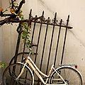 vélo, grille, végétation_6411