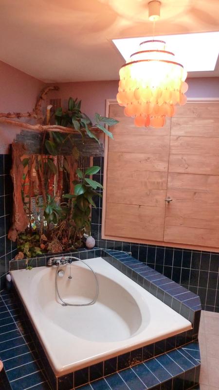 P1010413 copierBBB salle de bains