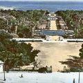 1950-jardin d'essai-alger