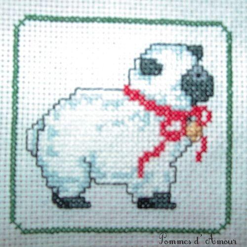 n°16 - Le mouton de Oummy