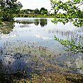 Lac d'Agès 29041665