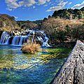riviere_967841538_o