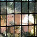 Paysage en cage (4)