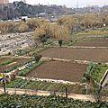 Jardin dans lit de rivière à Barcelone