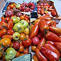 21 juillet - les tomates anciennes, c'est le pied....
