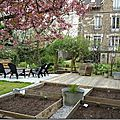 Windows-Live-Writer/Joli-printemps-au-jardin-_601C/20170331_141437_thumb