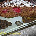 Moelleux chocolat framboise