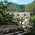 Guadeloupe la surprise est arrivée - 8 - la grivelière