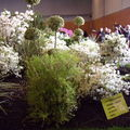 Floralies 076
