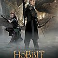 Legolas and Tauriel The Hobbit The Desolation of Smaug