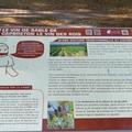 Capbreton, sentier du chemin de la randonnée de la route départementale du vin de sable (40)
