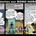 Boko haram, qu'est-ce que c'est?