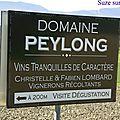 PEYLON
