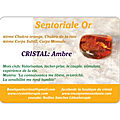 CRYSTAL-THERAPIE