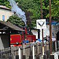 train a vapeur des cevennes (11)