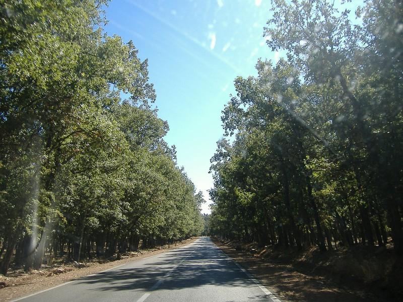 Route Meknes Ifran Km 50