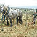 23 avril - démonstration de travail du sol des vigne en forte pente