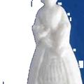 feveplastiqueprincesse