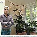 👨🌾 Les plantes dépolluantes. Etude personnalisée
