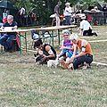 075 Expo Chalette sur Loing 2015