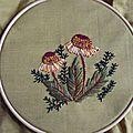 Fleur juillet orangée #1