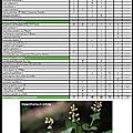 Guide des végétations de la Creuse