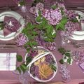 table lilas 055