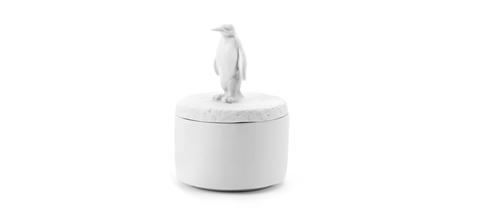 Wonderland-boite-pingouin