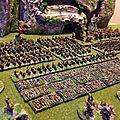 Armée skaven complete (9)