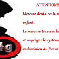 IMPREGNATION PLACENTAIRE ET FOETALE PAR LE MERCURE DES <b>AMALGAMES</b> DENTAIRES
