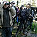 Sortie observation des oiseaux à <b>Saint</b>-<b>Fiel</b>