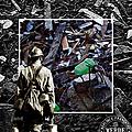 TRI SELECTIF 01