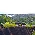 Guyane, roche savane Virginie (10)