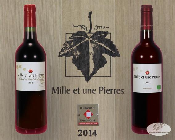 «Le Mille et Une Pierres», l'incomparable vin de Corrèze!